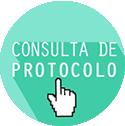 Consulta de Protocolo